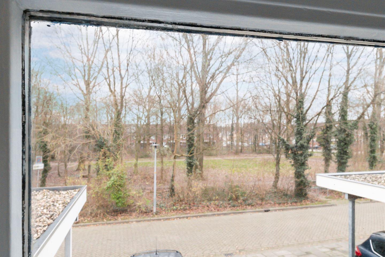 Bekijk foto 1 van Spinnekopmolenstraat 9