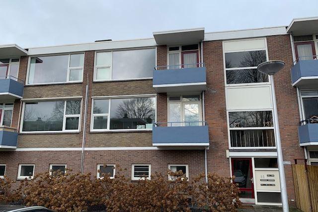 Bekijk foto 1 van Hornstraat 67