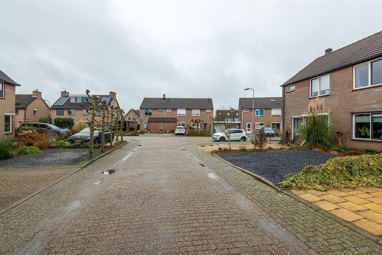 Bekijk foto 5 van Glorie van Holland 23