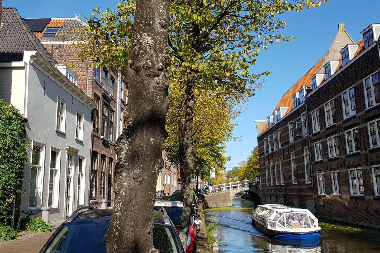 Bekijk foto 3 van Oude Delft 45