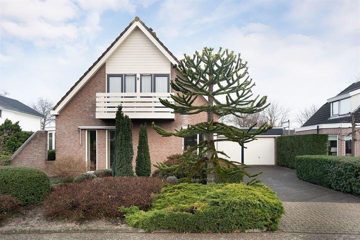 Welpenhof 17