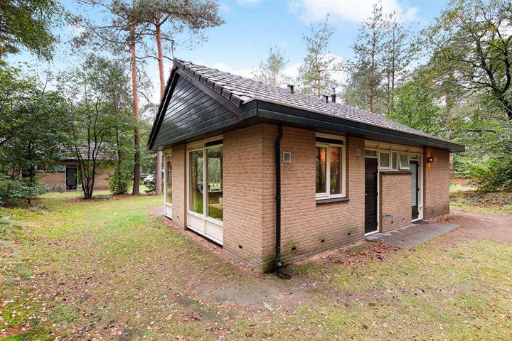 Grevenhout 21 218