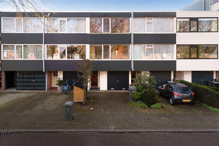 Lavendelstraat 44