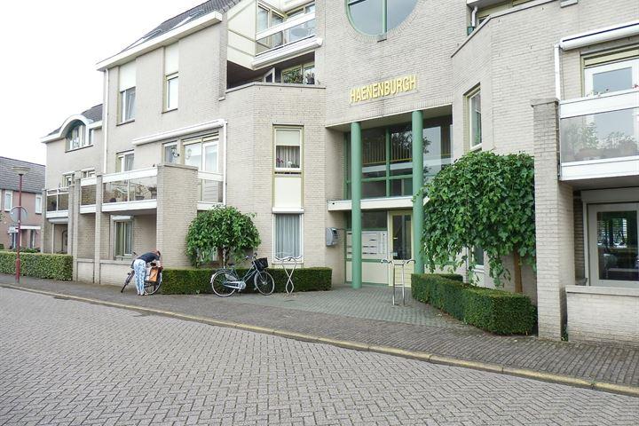 Haenenburgh 1
