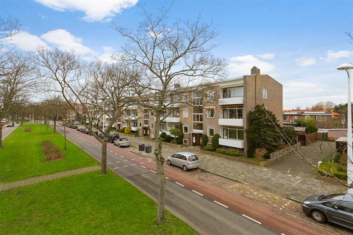 Willem de Zwijgerlaan 161