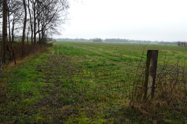 Bekijk foto 5 van Emsbroekweg 4 nabij