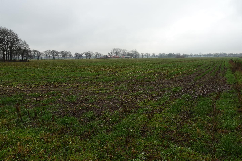 Bekijk foto 2 van Emsbroekweg 4 nabij