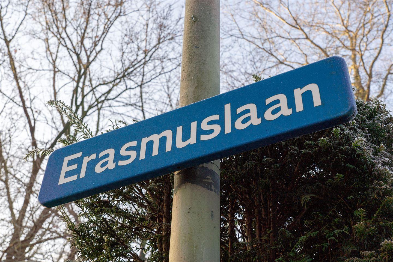 Bekijk foto 3 van Erasmuslaan 16