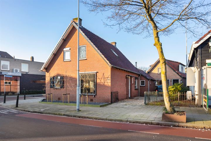 Dorpsstraat 203