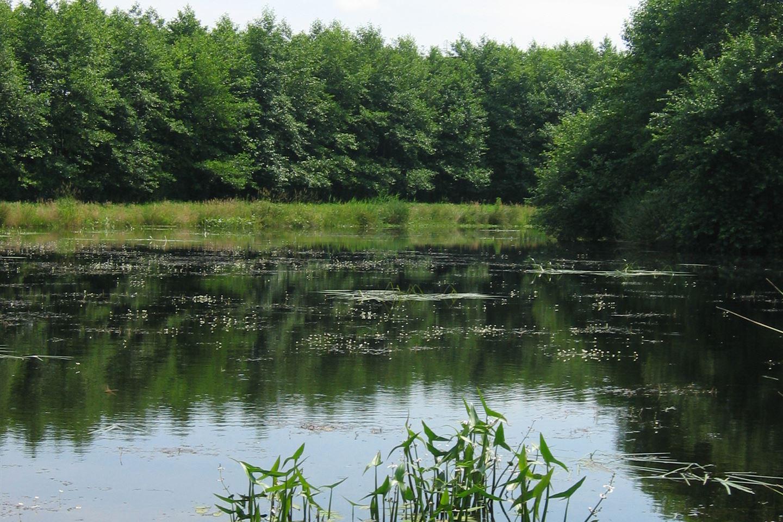 Bekijk foto 2 van Oostwoldjerweg 3