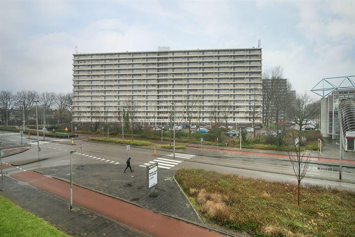 Louis Couperusplaats 151
