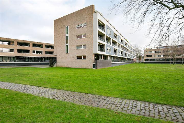 Gotenpark 107