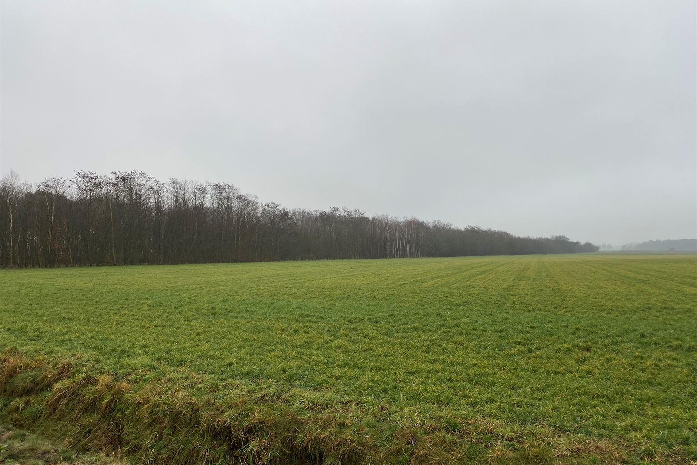 Bekijk foto 3 van Goorweg