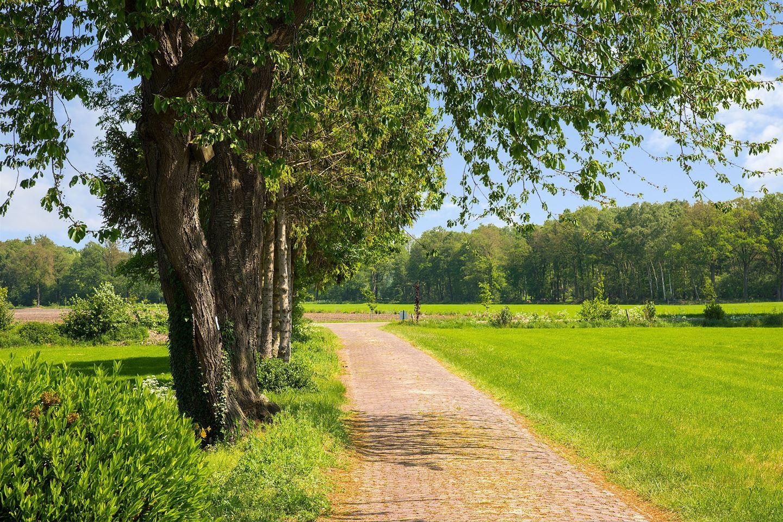 Bekijk foto 5 van Rikkerinksweg 2 - 2a