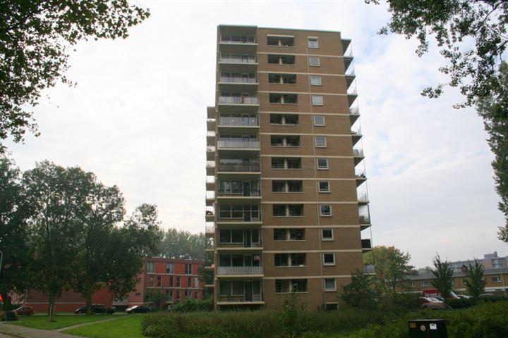Hongarenburg 128