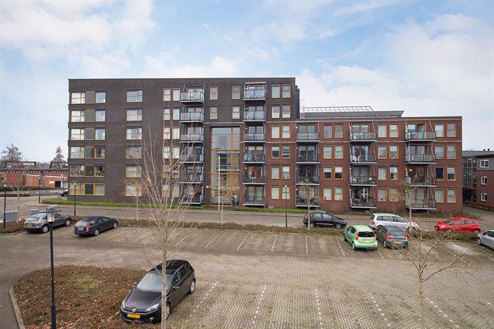 Ravelijn 296