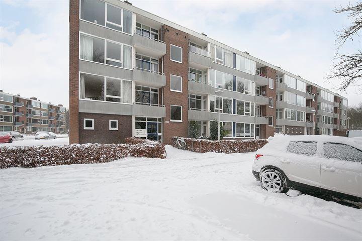 Ruusbroecstraat 137