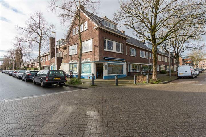 Wethouder D.M. Plompstraat 50, Utrecht