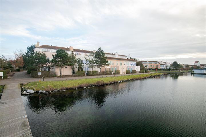 Port Zélande 648