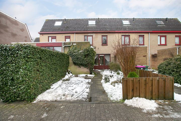 Doornenburg 106