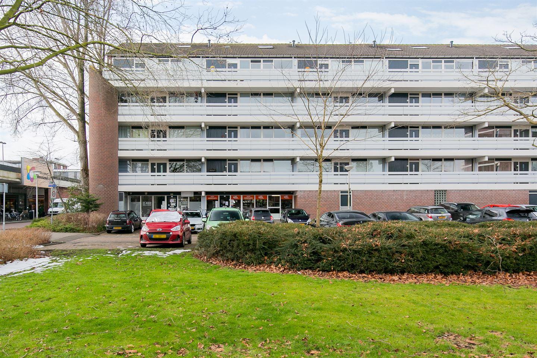 Bekijk foto 1 van Ruigenburg 29