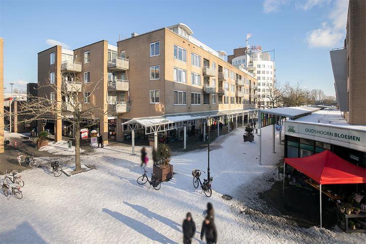 Emiclaerhof 218