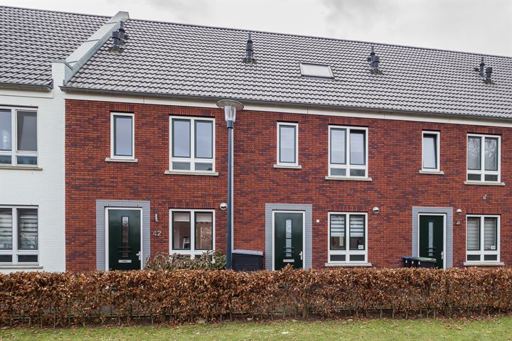 Buitenhof 42