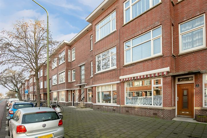 Driebergenstraat 238