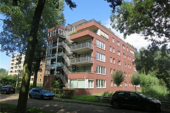 Finnenburg 25