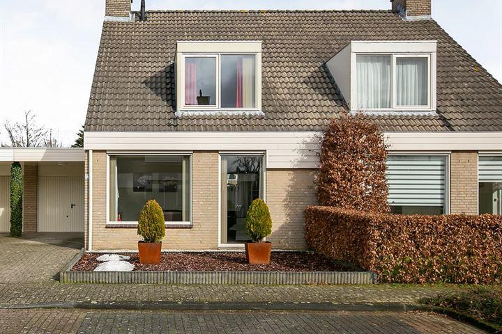 Haag 13