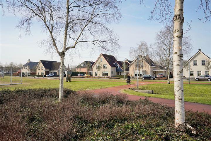 Aalscholverstraat 12