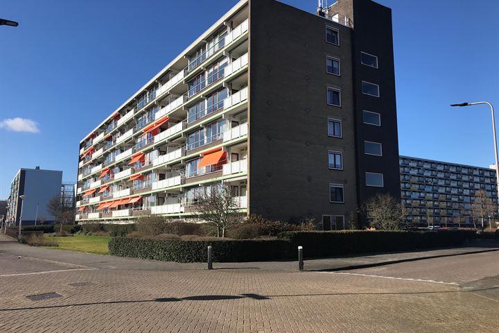 Briljantstraat 418