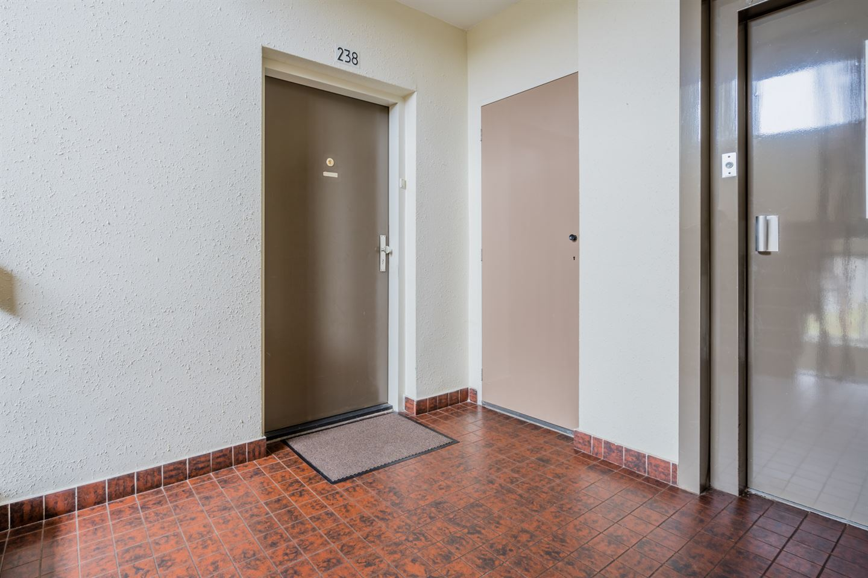 Bekijk foto 3 van Rijnauwenstraat 238