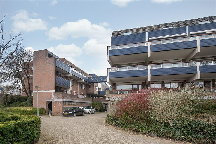 Doornenburg 7