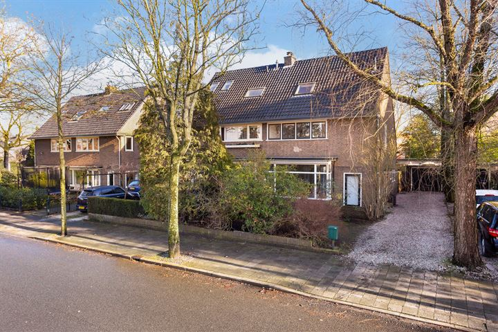 Johan de Wittstraat 43