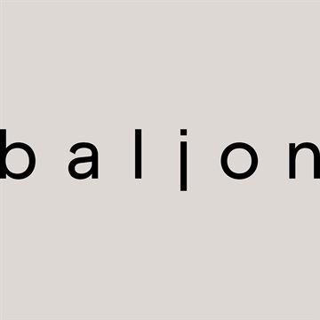 Baljon makelaars