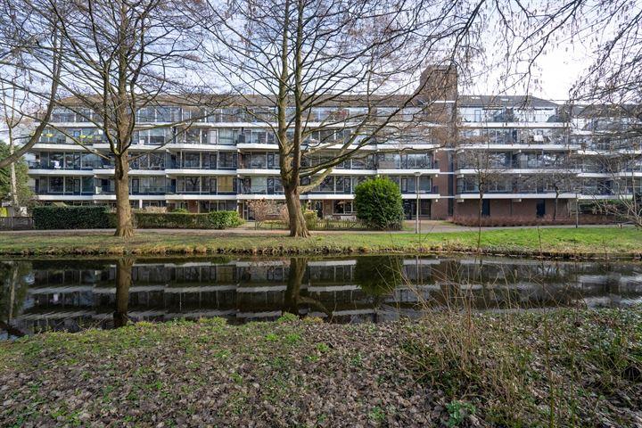 Ruigenburg 155