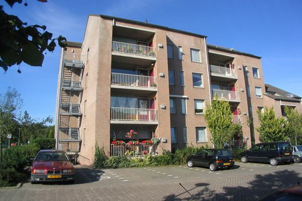 Brugstraat 226