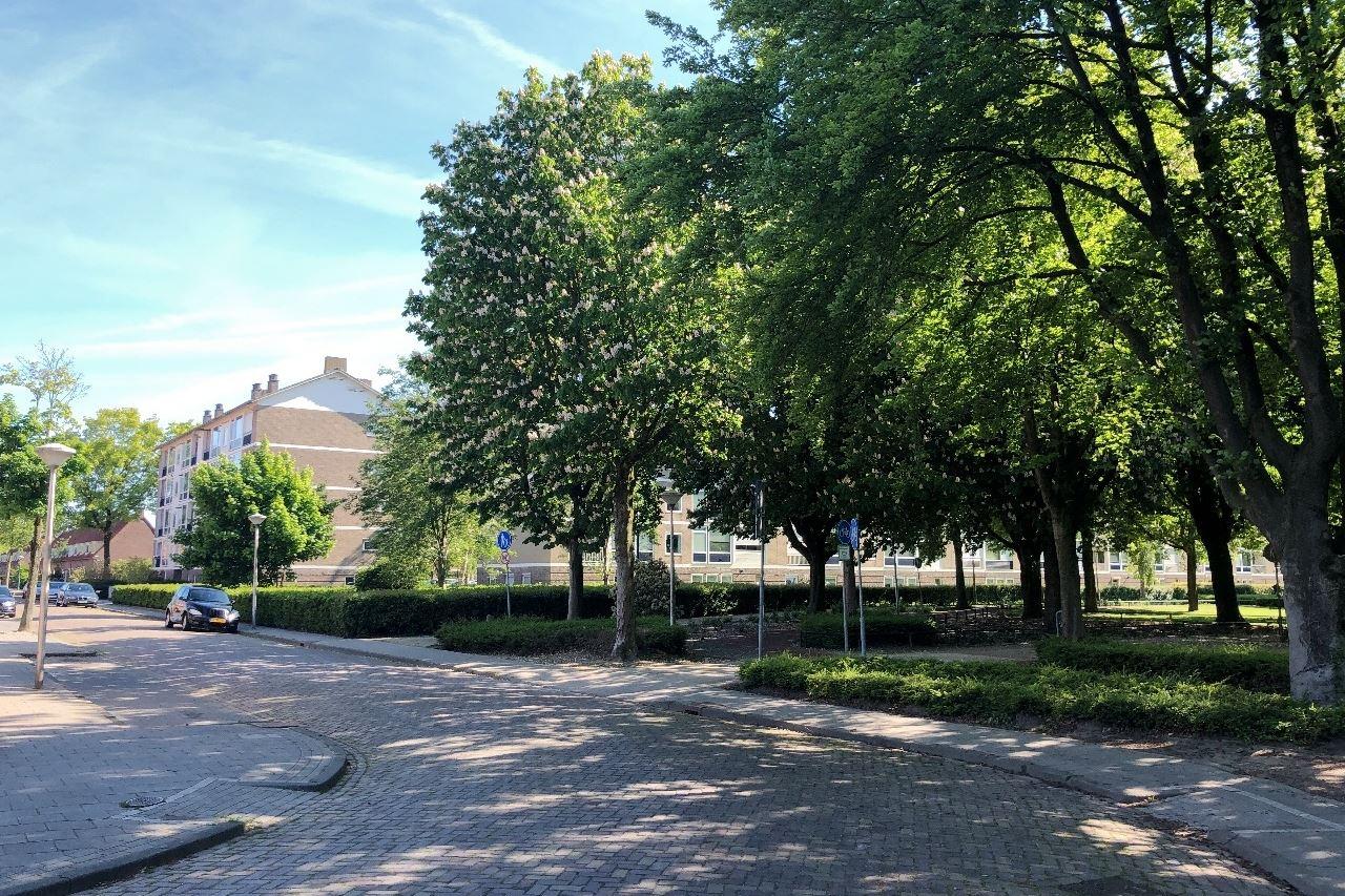 Bekijk foto 3 van Simon van Leeuwenstraat 6