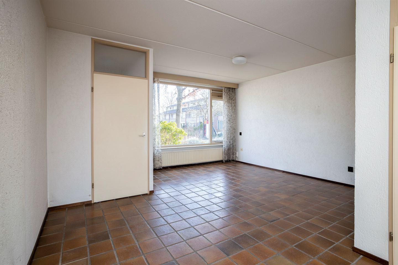 Bekijk foto 3 van De Frankenthaler 11