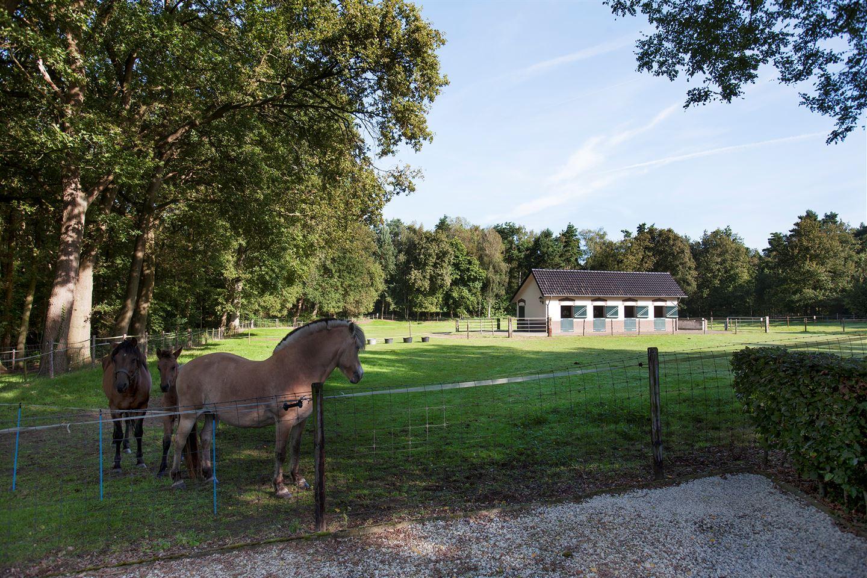 Bekijk foto 3 van Sint Servaasweg 42 -42a