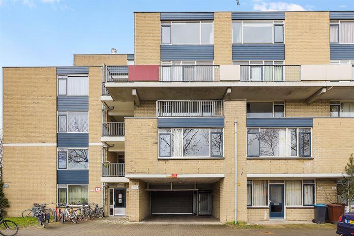 Texel 151