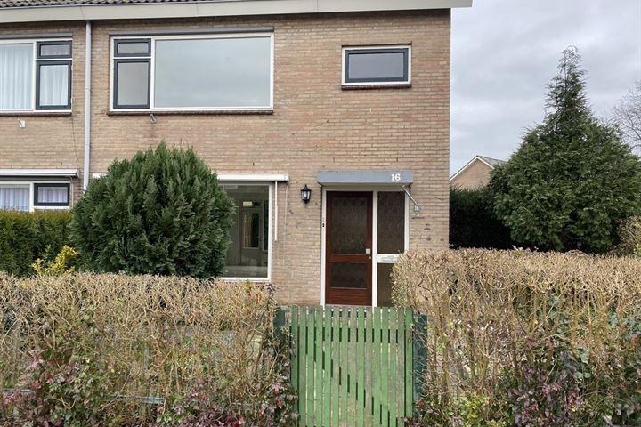 Johan de Wittstraat 16