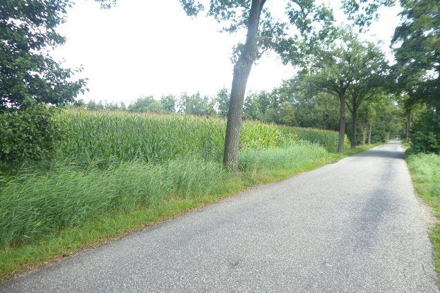 View photo 2 of Traandijk