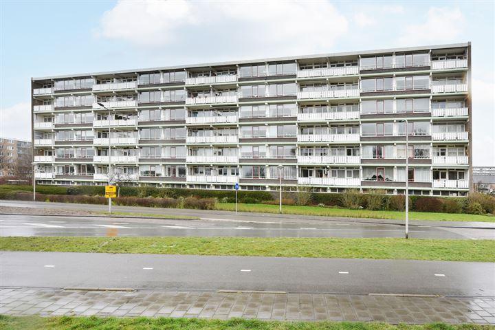 Briljantstraat 484