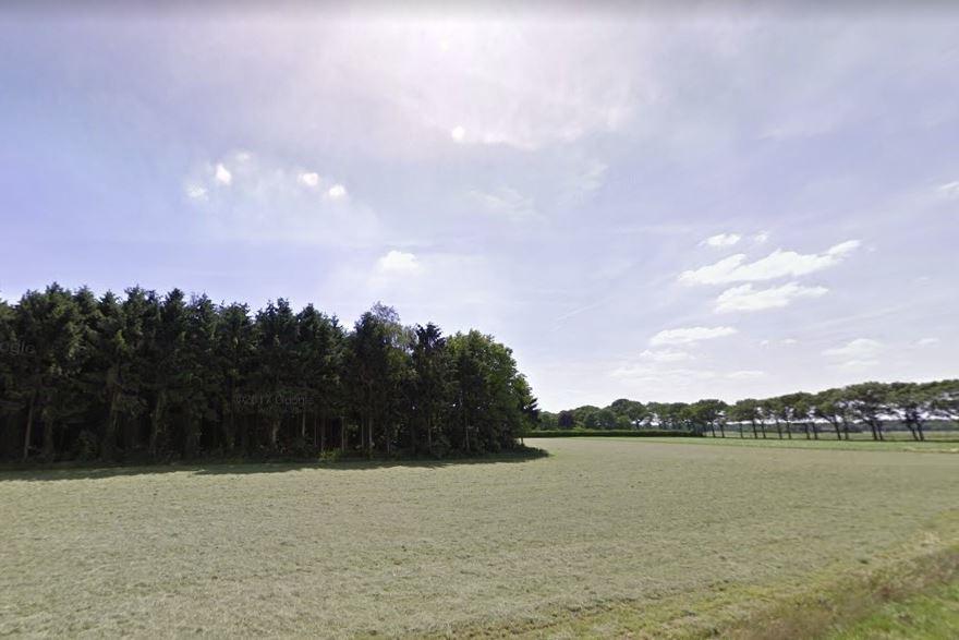 Bekijk foto 2 van Nieuwe Lijn