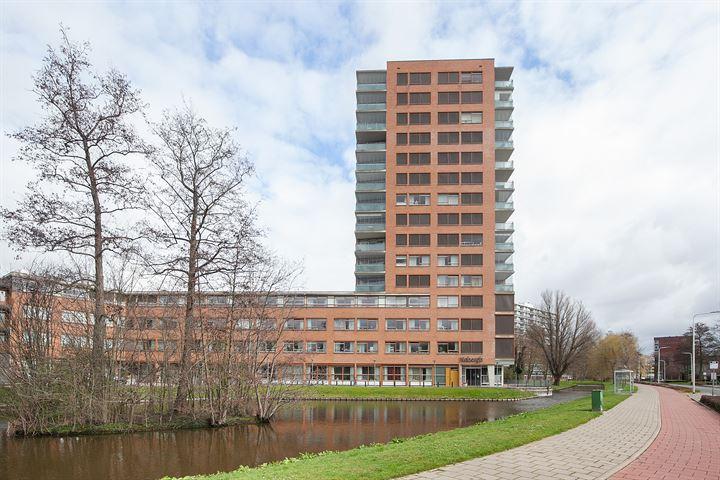 Hoofdland 431