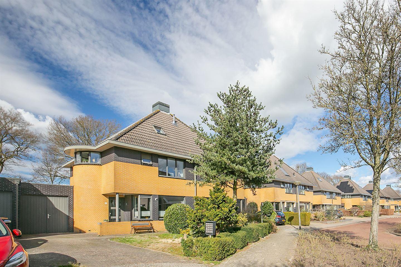 View photo 1 of De wiezeboom 61