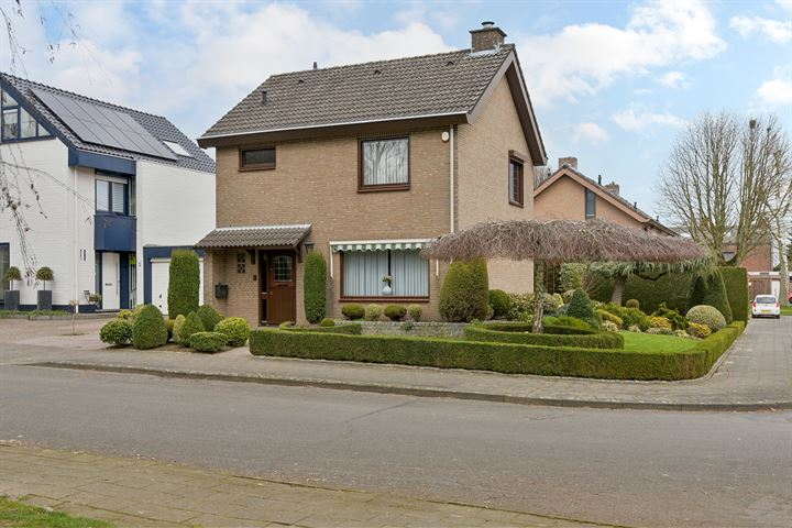 Rijnbeek 7