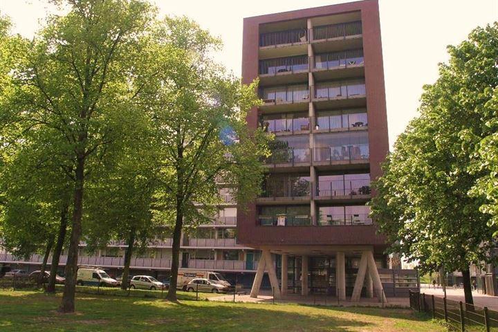 Duindoornstraat 63 B